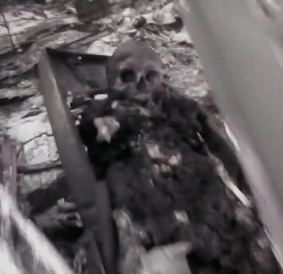 Graphic video from the California wildfires shows a bunch of bodies that were burned alive (graphic video)
