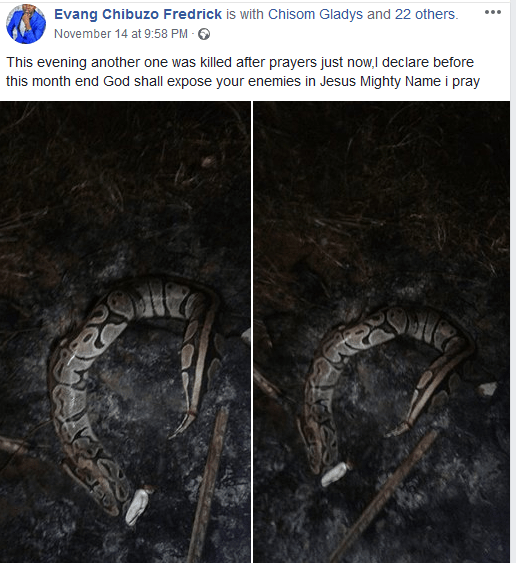 Nnewi-based pastor testifies after two snakes were found fighting in the front of his church just after a hot prayer session(photos)