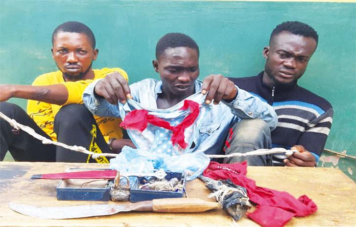 Photo: Three men nabbed for stealing female pant in Ogun