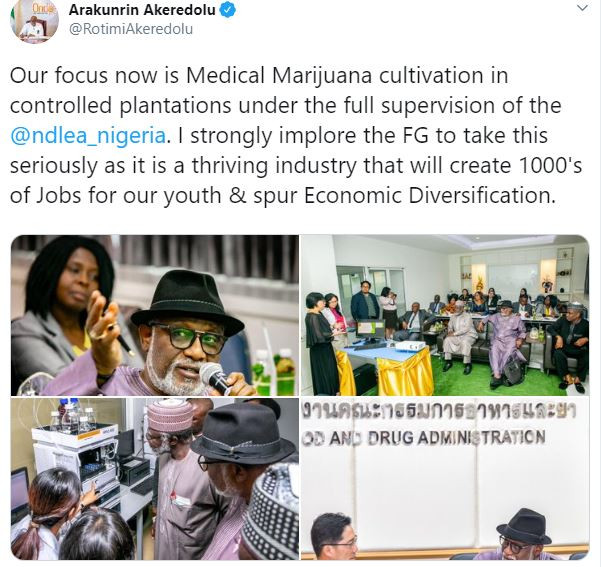 Ondo State governor, Rotimi Akeredolu and NDLEA Boss, Abdallah visit?Thailand to learn how to grow medical cannabis