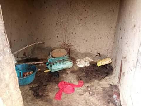 Graphic: Woman hacks her daughter, six grandchildren to death in Uganda