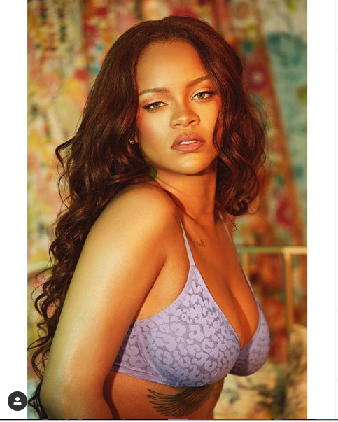 Rihanna flaunts her ample assets as she poses in just bra and panties (Photos)
