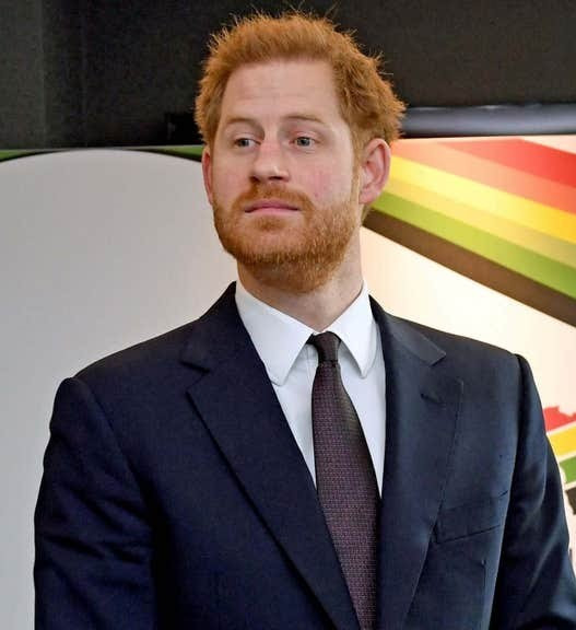 Prince Harry loses complaint against Daily Mail over article criticising his wildlife photos