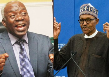 Presidency has no power to to stop peaceful protests - Falana