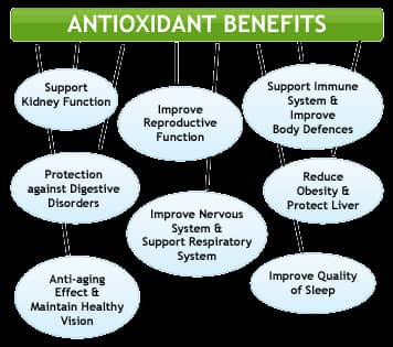 Enter a New Dimension to Better Health, Boost Your Immune Sysytem and Gluthathione Naturally