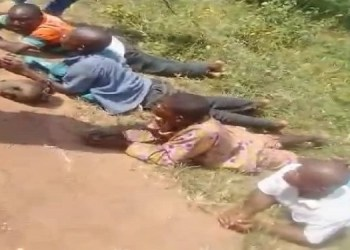 Grave diggers apprehended with five severed human heads in Ondo (photo)
