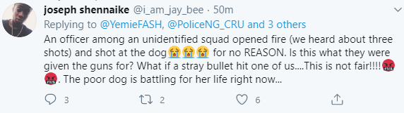 Dog on the brink of death after a policeman allegedly shot it when it prevented them from entering a compound in Akure (graphic photo)