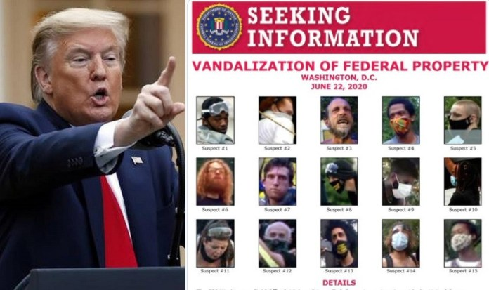 Donald Trump confirms many are in custody as he?seeks help in identifying 15 other suspects for vandalization of Federal Property