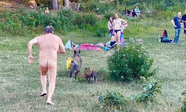 Naked German man chases wild boar that stole his laptop (photos)