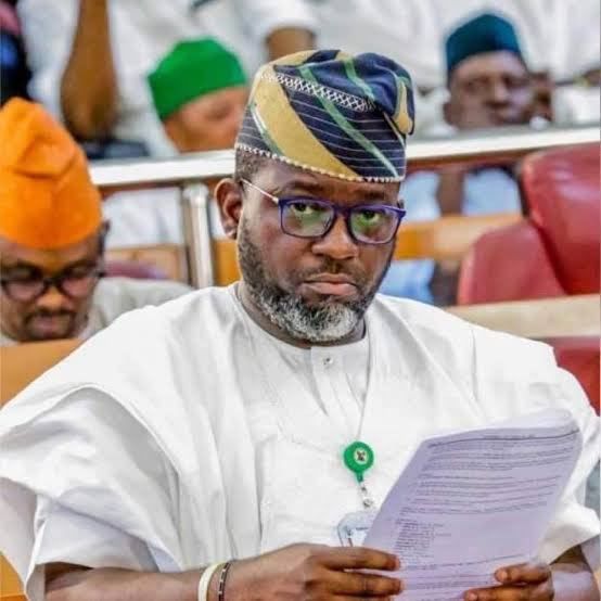 Those who destroyed properties in Lagos were incited by what they read on news and papers, our influencers must be brought to book - Lawmaker, Adewale Temitope lindaikejisblog