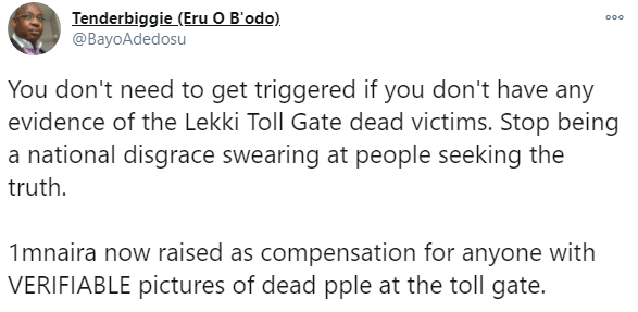 Canada-based Nigerian researcher raises N1.125million reward to anyone with evidence of casualties from the Lekki tollgate incident