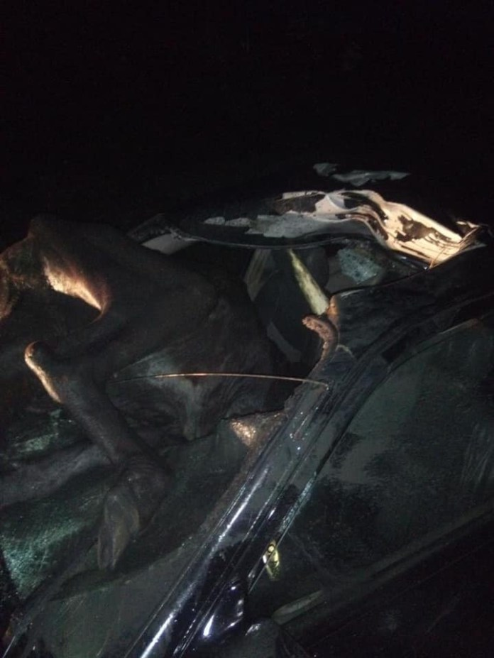 Cow crashes into car in Delta lindaikejisblog
