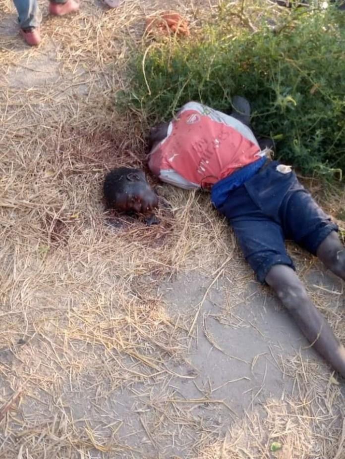 #ZabarmariMassacre: Photos of the rice farmers slaughtered by Boko Haram in Borno (Graphic)