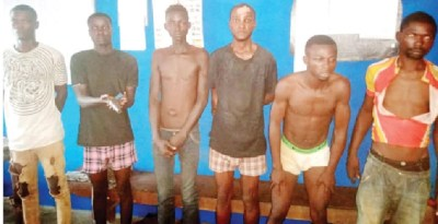 Cult members arrested while fighting over a gun deal in Ogun