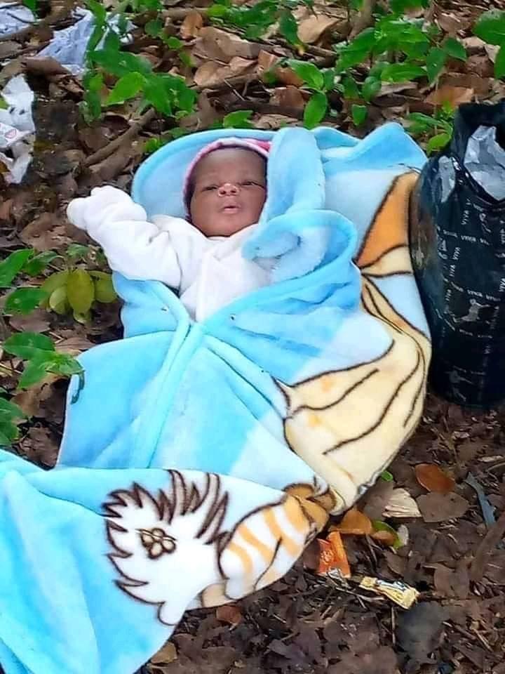 Abia varsity students rescue newborn baby found abandoned on farmland