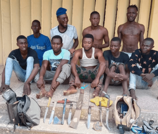 Nine cultists arrested during supremacy clash in Ogun (photo)