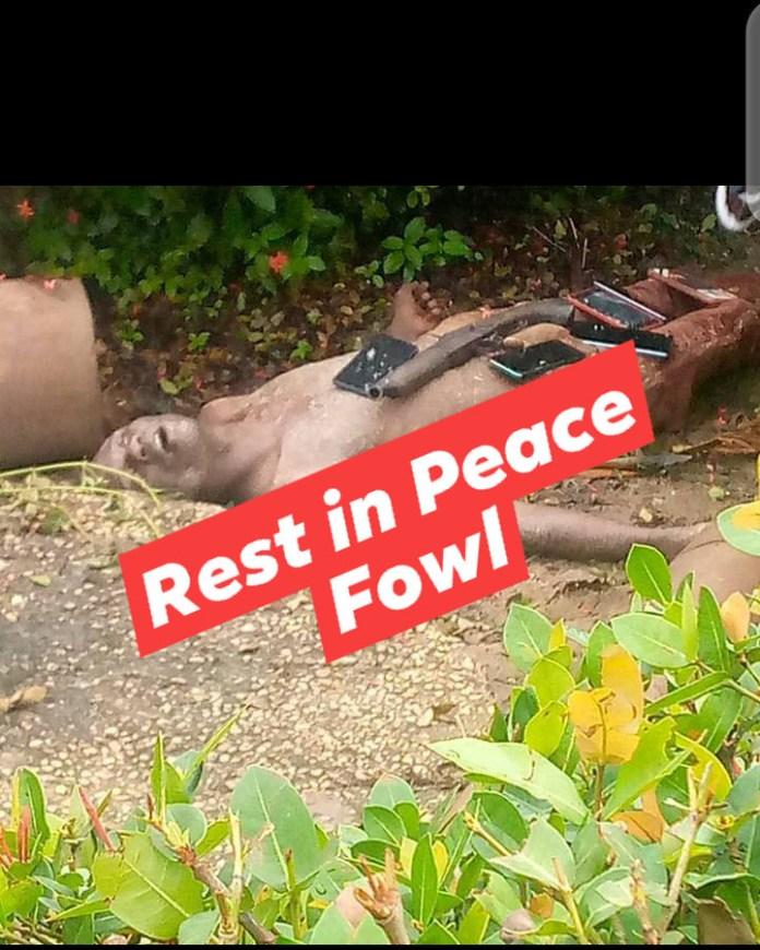 Jubilation in Delta community as police, vigilantes gun down notorious criminal, Fowl boy