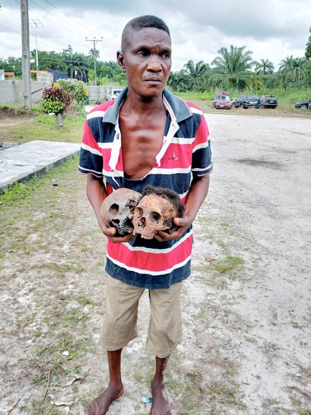 Native doctor arrested with human skulls in Delta( photo)