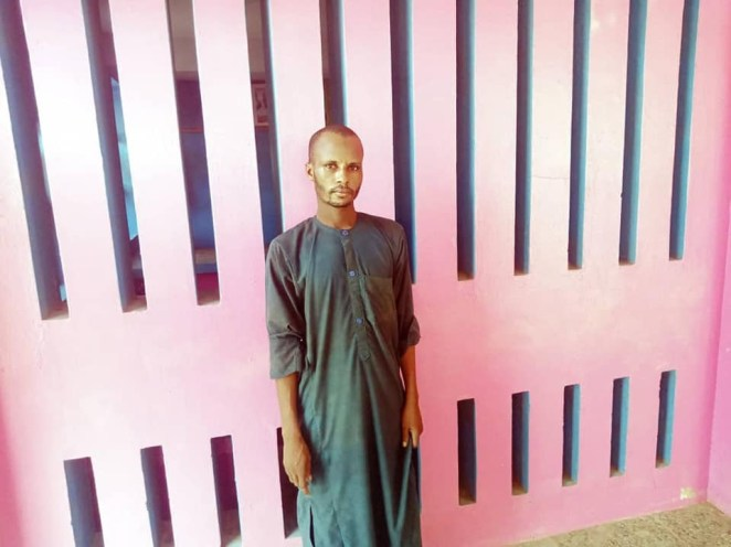 Adamawa police arrest 14 notorious kidnappers, recover 19 phones, 22 SIM cards