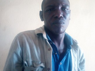 Man bags two year jail sentence for allegedly calling police…