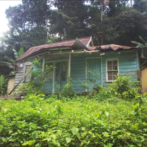 An old house in ruins, Jamaica
