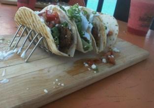 shrimp tacos seafood food travel