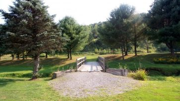Bridge at a park