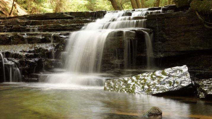 Waterfall at Salt Spring State Park (Long Exposure)