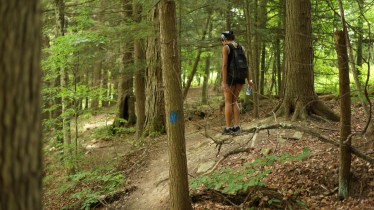 salt spring state park new milford hiking trail jamaican travel blogger hiking