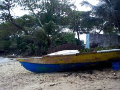 boat boston bay beach surfing travel jamaica
