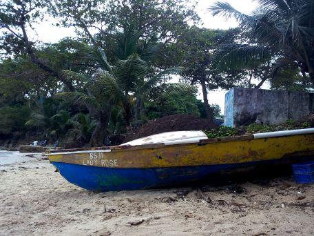 boat boston bay beach surfing travel jamaica