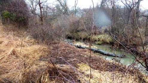 rain autumn hiking trail river stream