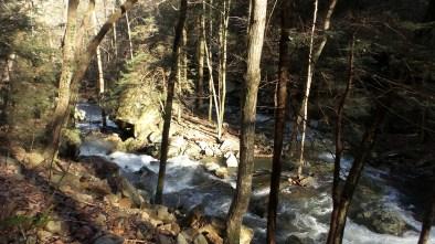 river nature travel