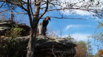 alexis chateau hiking tree travel