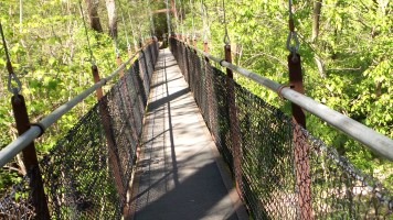 lullwater park swinging bridge trail hiking