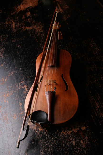 What a Viola Taught me about my Biggest Failure