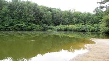 landscape water green lake henderson park