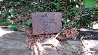 Constitution Lakes Thank a Witch