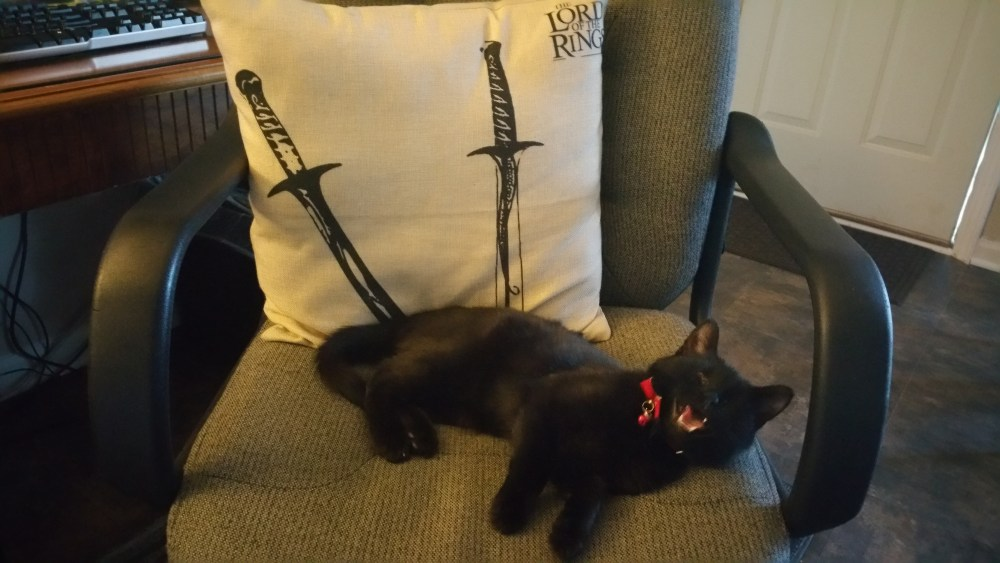 Shadow the Pr Cat Lord of the Rings.jpg
