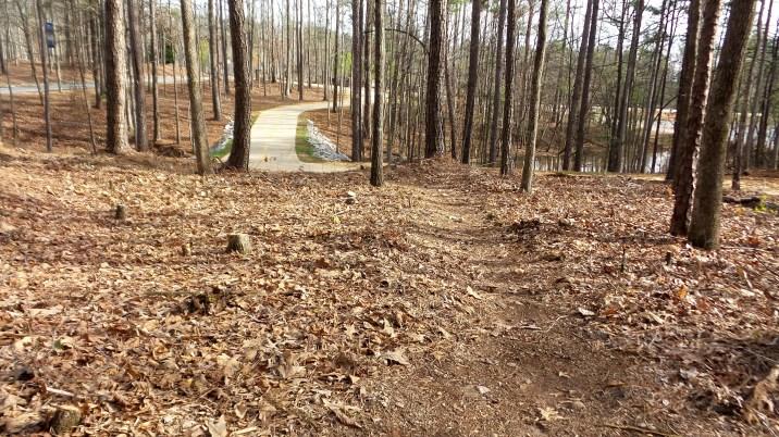 33-georgia-hiking-trail
