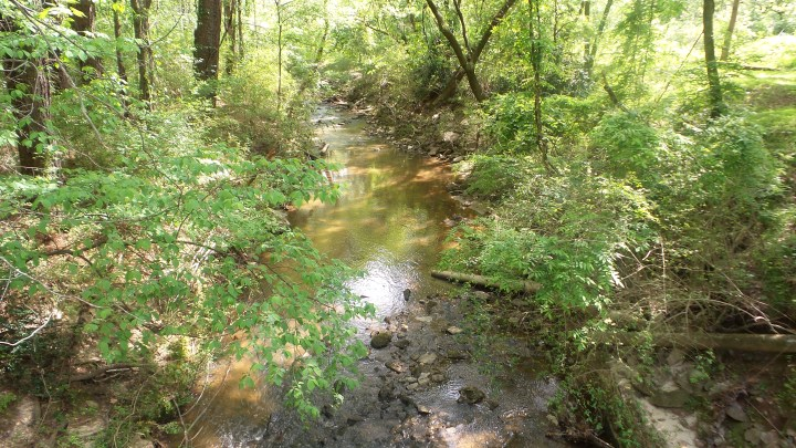 15 Mason Mill Stream Waterscapes