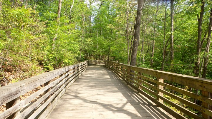 16 Mason Mill Boardwalk