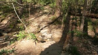 28 Deepdene Park Trail Steps