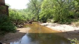 3 Mason Mill Hiking Trail USA
