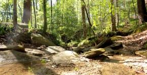 30 Deepdene Park Stream