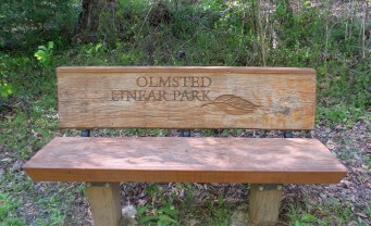 45 Wooden Bench on Georgia Hiking Trails
