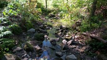 52 Deepdene Park Stream