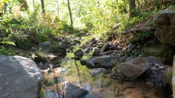 53 Deepdene Park Stream