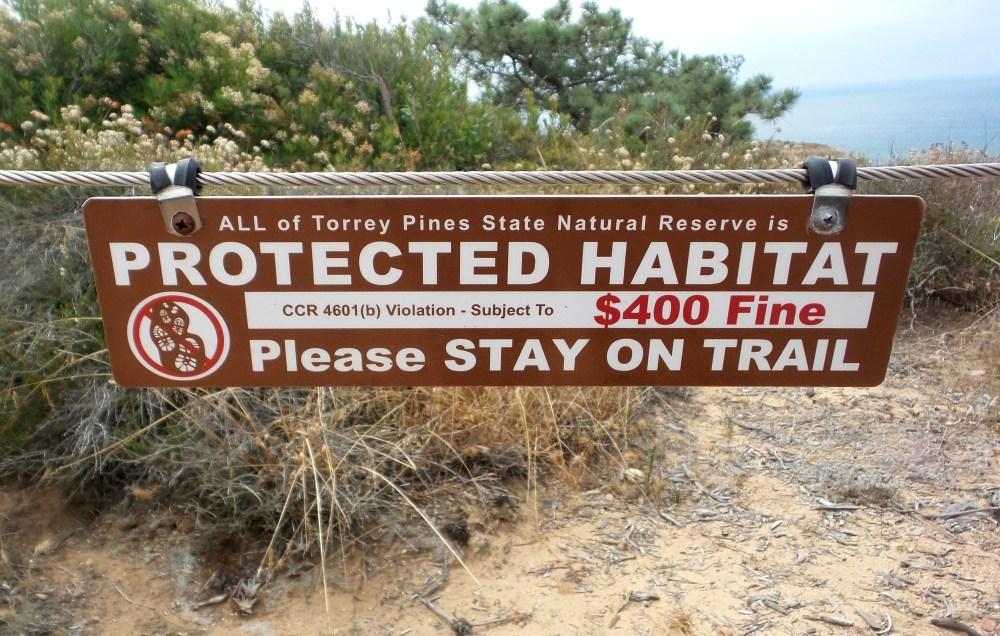 31 Torrey Pines Protected Reserve.jpg