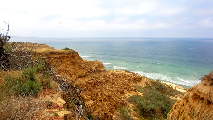 35 Torrey Pines Cliffs